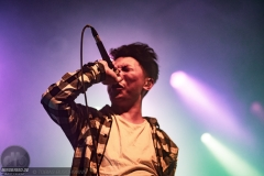 To The Rats And Wolves - 05.04.2019 -  Köln